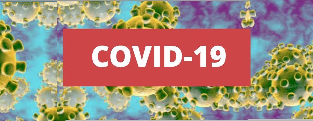 COVID-19 – Lista de Escolas de Acolhimento