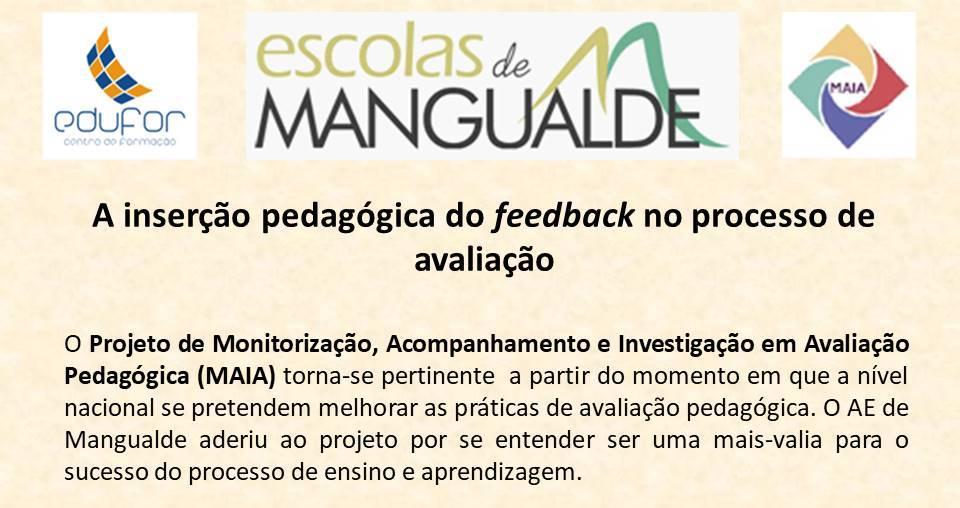 Projeto Nacional de Monitorização, Acompanhamento e Investigação em Avaliação Pedagógica