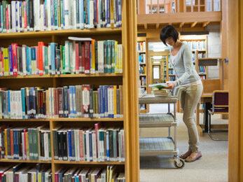 Concurso para professor bibliotecário